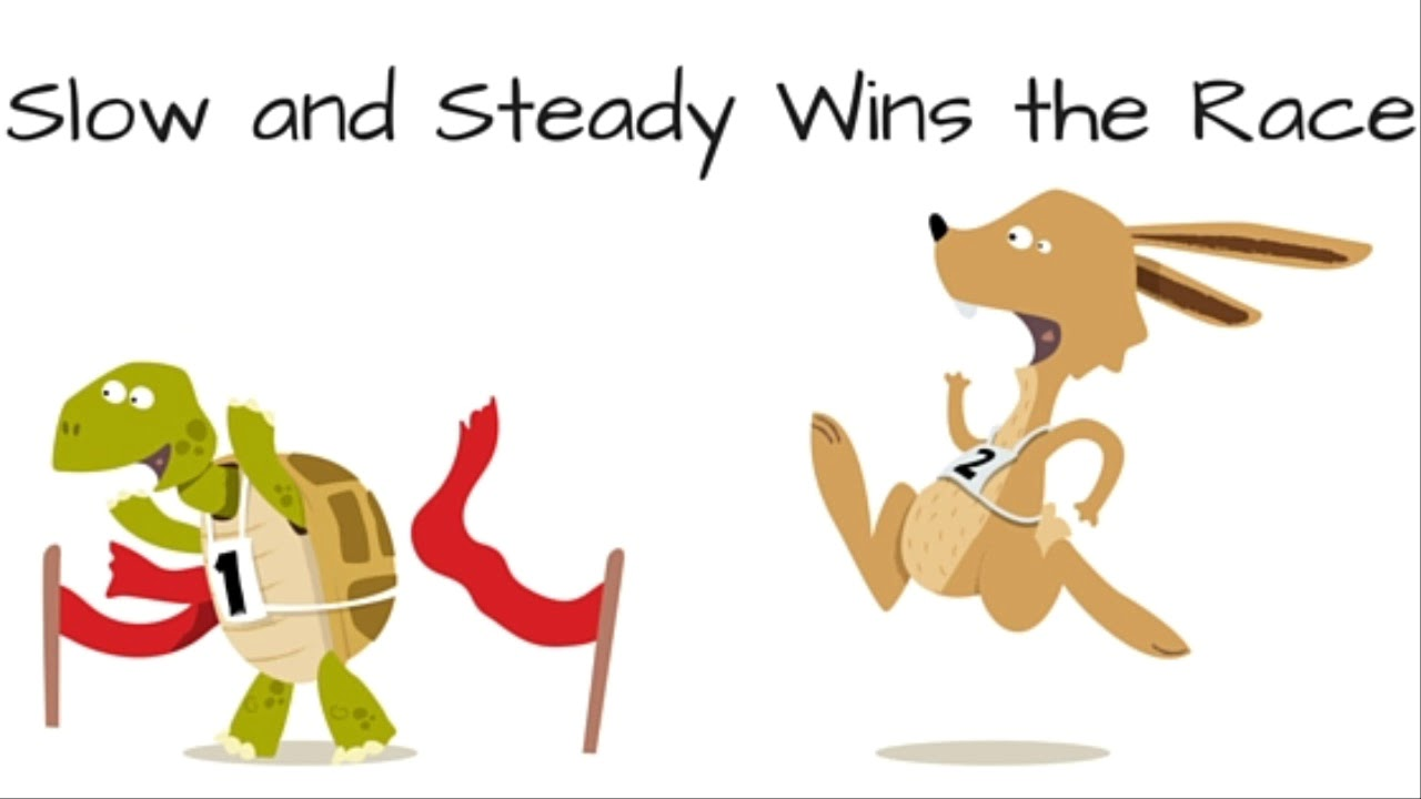slow and steady wins the race essay