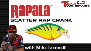 """The Rapala Scatter Rap Crank With Michael """"Ike"""" Iaconelli"""