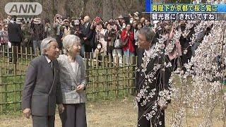 両陛下が京都でサクラご覧に 観光客と触れ合いも(19/03/27)