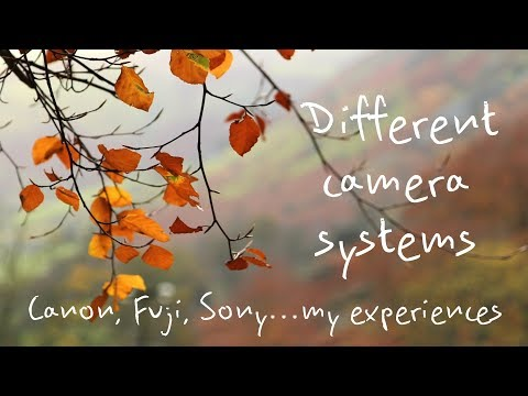 Canon, Fuji, Sony...my personal experience of three different camera systems