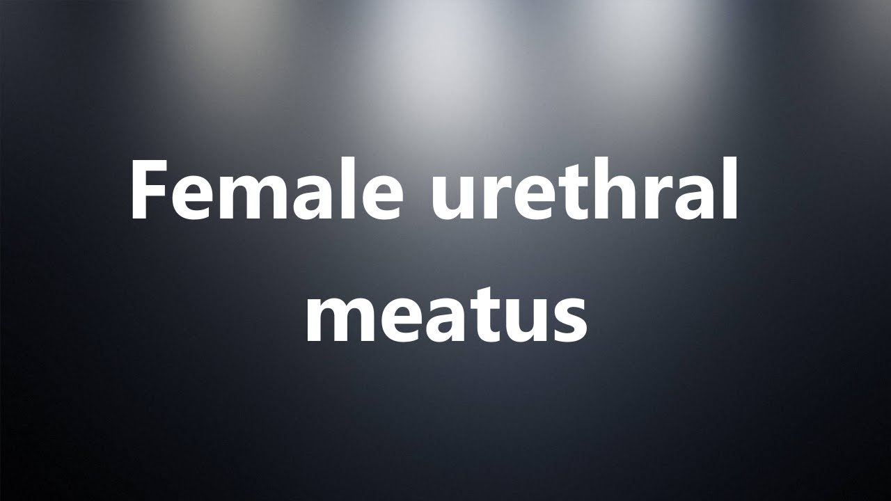 Female urethral meatus - Medical Definition and Pronunciation - YouTube