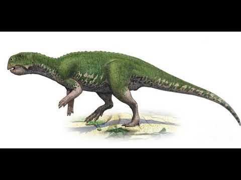 Dinosaurs names