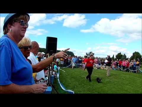 Wiener dog races Dubuque, Iowa 2016 Octoberfest