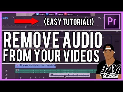 Adobe Premiere Pro CC - How To Delete Audio - How To Remove Audio From A Video Tutorial