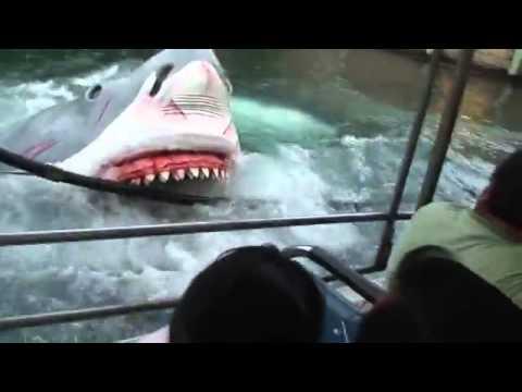 Ikan Jerung Menyerang  YouTubeFLV  YouTube