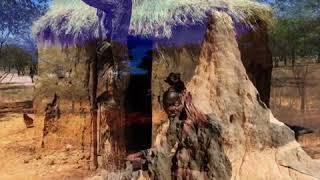 Die unendlichen Weiten Namibias