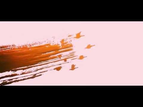 indian paintbrush logo slow motion - youtube