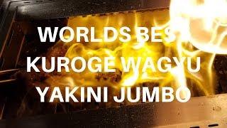Best Kuroge Wagyu Meal Yakiniku Jumbo BBQ Tokyo Restaurant in Hong Kong Harry Soo SlapYoDaddyBBQ