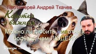 Можно ли к животным относиться лучше, чем к людям? о. Андрей Ткачев