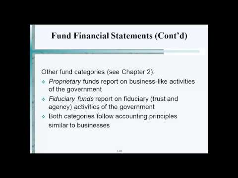 Fund Financial Statements