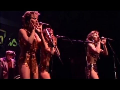 KID CREOLE & THE COCONUTS - Stool Pigeon - Live At Rockpalast (live video)