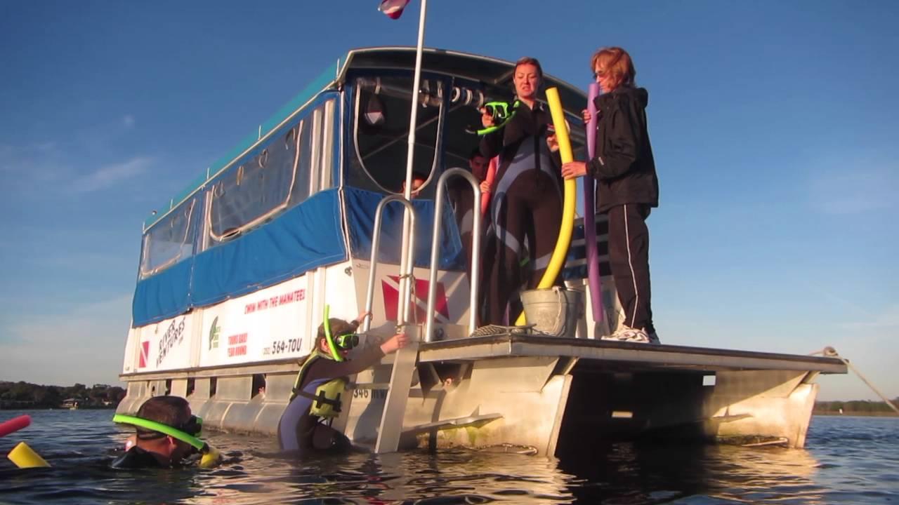 River Ventures  Swim & Snorkel with Manatees  Crystal River