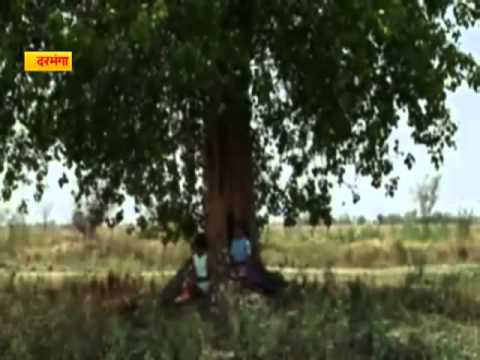 Bhojpuri Film Gunja A Hit At Darbhanga International Film Festival