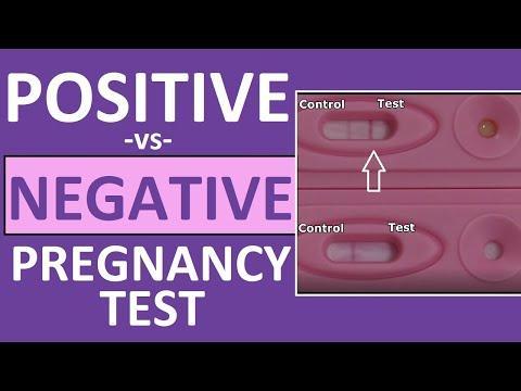 Pregnancy Test: Positive Vs Negative Results