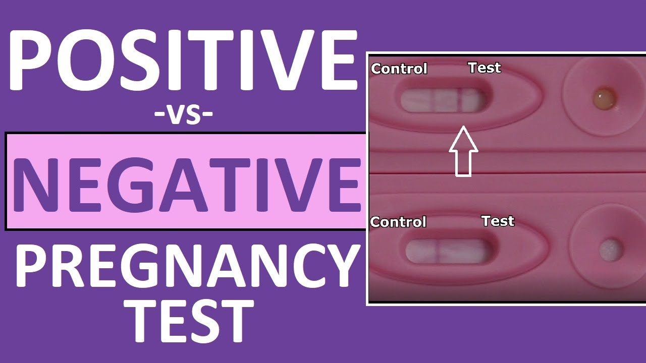 Pregnancy Test Positive Vs Negative Results Youtube