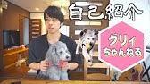 清 油 木田 一 サクセス24のCM俳優│西野七瀬と共演のイケメン男性は誰?