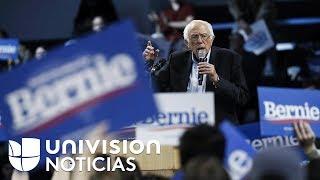 Bernie Sanders lidera la intención de voto entre latinos en Texas, según encuesta de Univision YouTube Videos