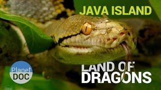 Java Island  [Indonesia]. Land of Dragons | Nature - Planet Doc Full Documentaries