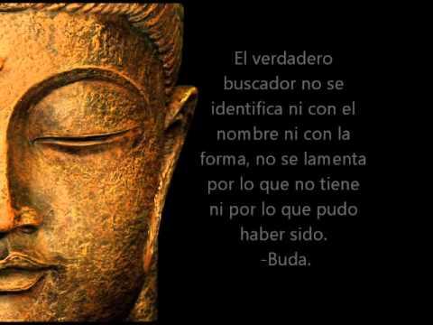 Frases De Buda Youtube