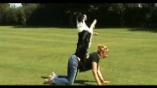 Barking Mad About Clicker Training Dvd Teaser