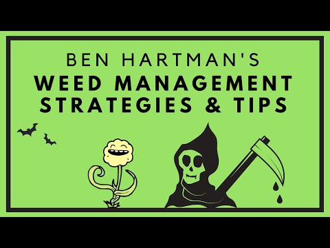 How to Control Weeds on Organic Farms | Tools & Advice