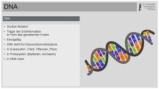 DNA - Das Buch des Lebens