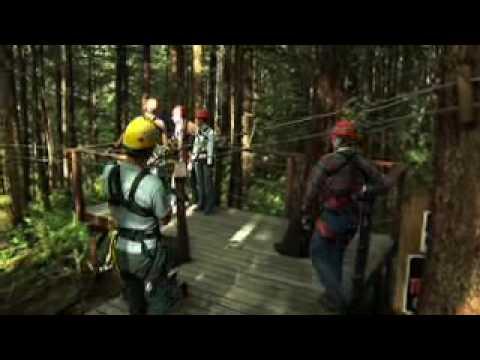 Rainforest Canopy & Zipline Expedition, Juneau, Alaska