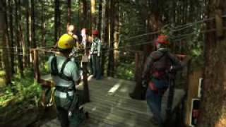 Rainforest Canopy & Zipline Expedition, Juneau, Alaska