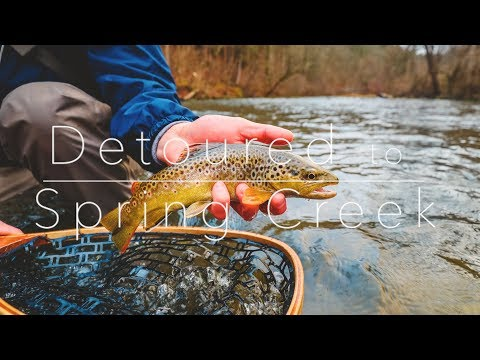 Fly Fishing Spring Creek | Where Our Channel Began!