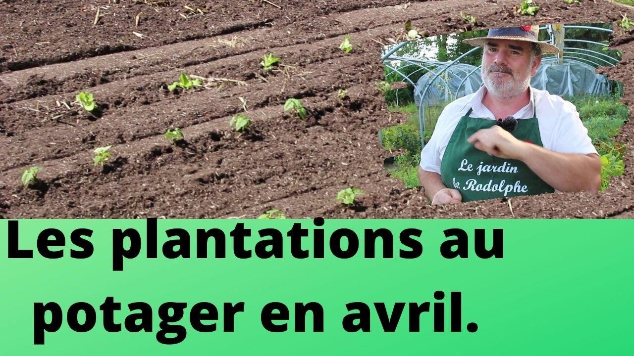 Mon Jardin En Avril les plantations au potager en avril.
