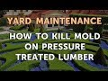 How to Kill Mold on Pressure Treated Lumber