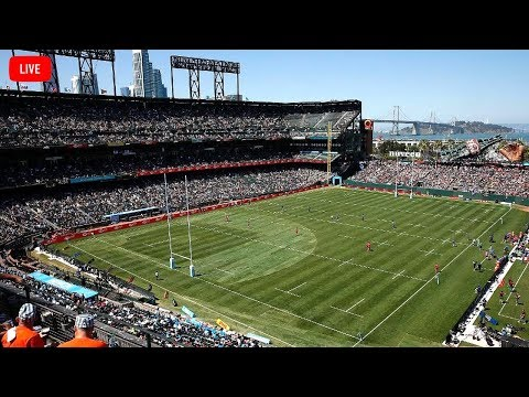 How To Watch Live Rugby World Cup Online For Free - Top 3 Rugby World Cup Streaming Websites