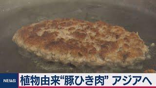 アジア向け大豆由来の人工肉