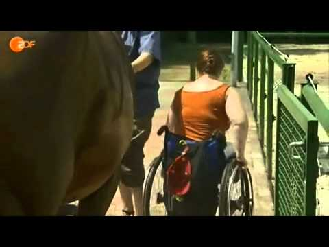 Amputee Woman  A T  on wheelchair DAK