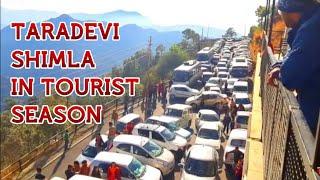 TARADEVI SHIMLA IN TOURIST SEASON