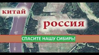 Сибирь станет пустыней! Если мы не остановим Китайцев