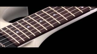 Framus Custom Shop Masterbuilt - Phil XG Solid White Satin