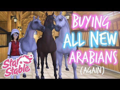 Buying ALL 3 New Arabians (again) || Synne Eastwood || SSO