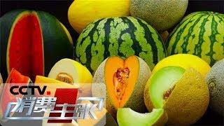 《消费主张》 20190429 水果里的消费升级:一百元的甜瓜有多甜?| CCTV财经