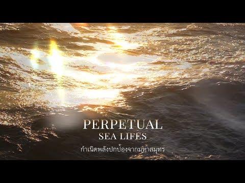PERPETUAL SEA LIFES