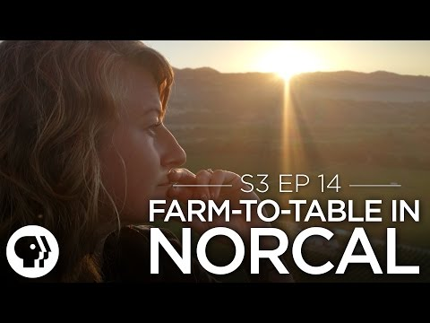 Farm to Table in Northern California | Original Fare | PBS Food