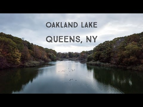 Oakland lake - Bayside Queens NYC - 4K - UHD