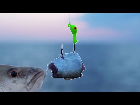 Two Effective Rigs To Catch Snapper Off ANY Fishing Pier