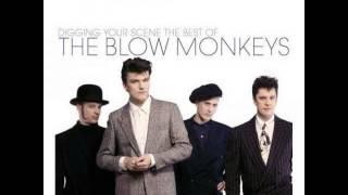 The Blow Monkeys -- It Doesn