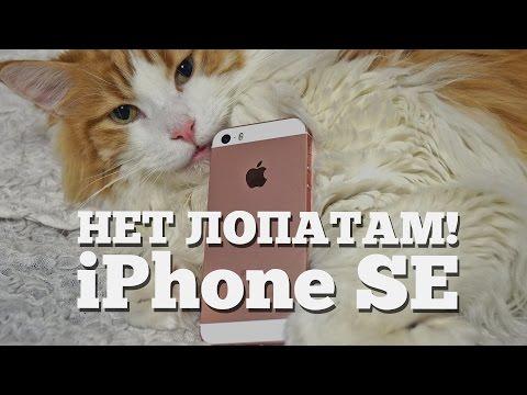 Обзор iPhone SE - дань Стиву Джобсу