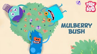 Mulberry Bush | English Songs And Rhymes For Kids | Peekaboo