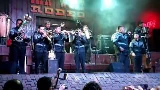 reyes vallenatos danza negra en vivo