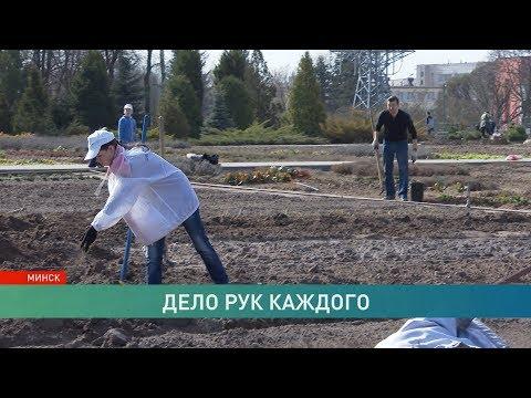 Республиканский субботник в Беларуси