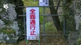 秩父湖吊橋