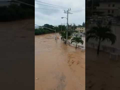 Lots of water in Mandeville jamaica